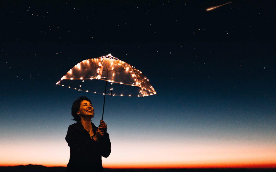 DISSET cierra 2020 de manera positiva y mira a 2021 con optimismo